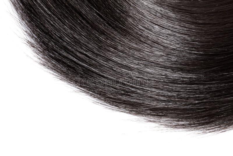 在白色背景的特写镜头黑发 图库摄影