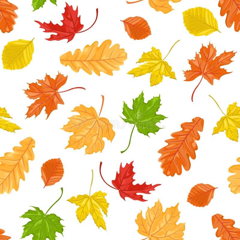在白色背景的秋叶无缝的样式 槭树、山毛榉和橡木叶子 皇族释放例证