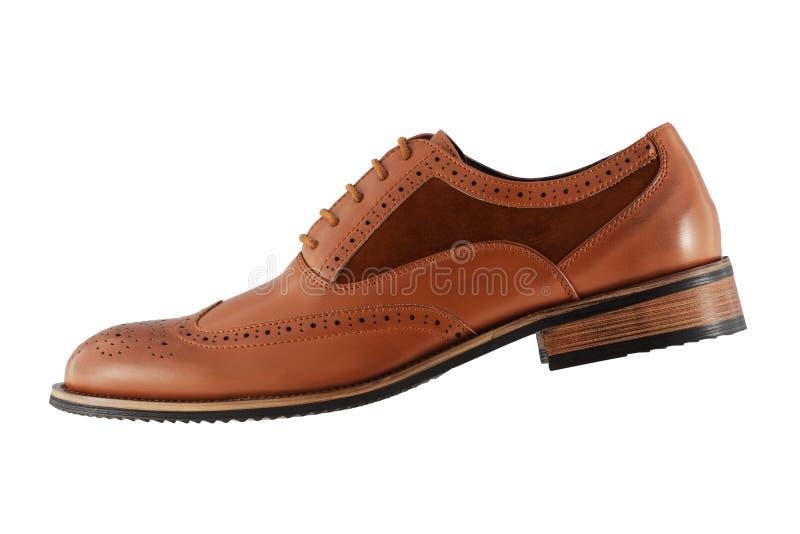 在白色背景的精神棕色鞋子侧视图 免版税库存照片