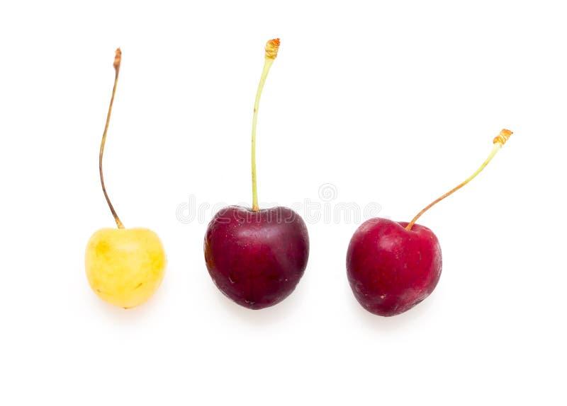 在白色背景的红色和黄色樱桃 免版税库存图片