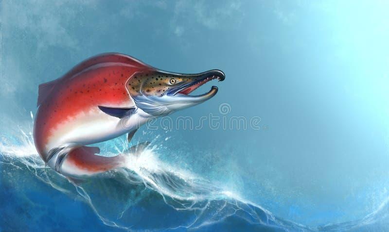 在白色背景的红鲑鱼跳出水,产生鱼,红色鱼子酱 红鲑鱼现实例证 大红色鱼 免版税库存照片