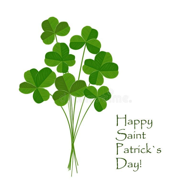 在白色背景的绿色三叶草花束 圣帕特里克天贺卡 爱尔兰语 传染媒介平的例证 库存例证