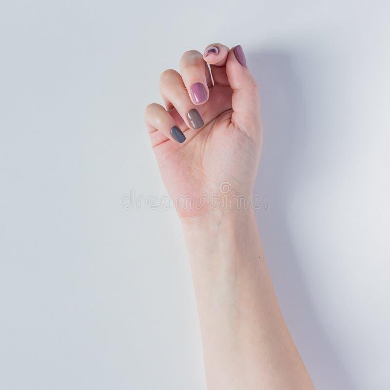 在白色背景的美丽的年轻女人的手 与灰色,桃红色和棕色指甲油的时髦的时髦女性修指甲 ?? 库存照片