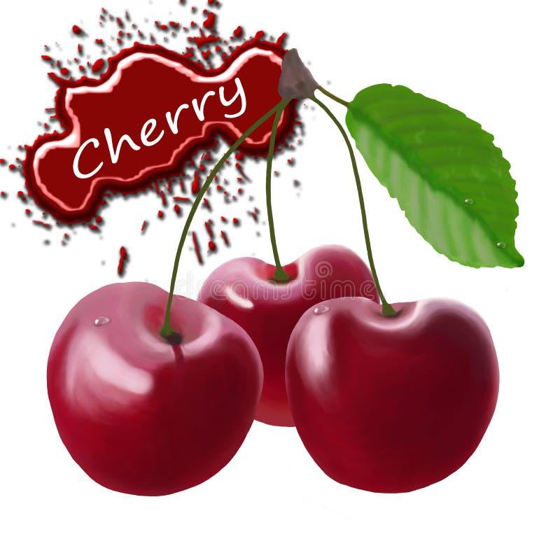 在白色背景的美丽的成熟樱桃 皇族释放例证