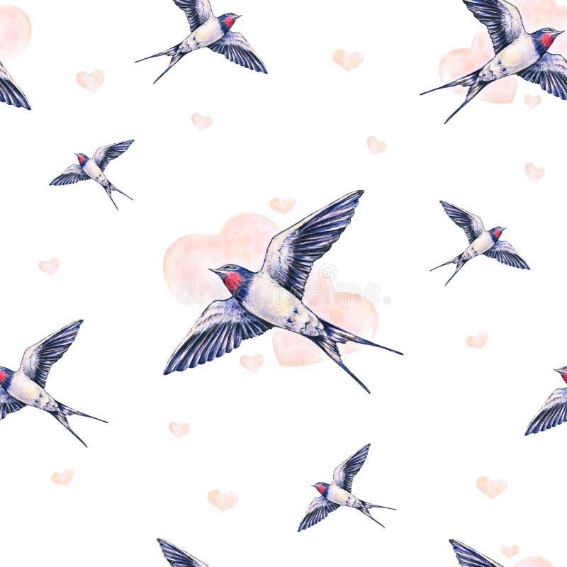 在白色背景的美丽的燕子 额嘴装饰飞行例证图象其纸部分燕子水彩 春天鸟带来爱 手工 无缝的模式 库存例证