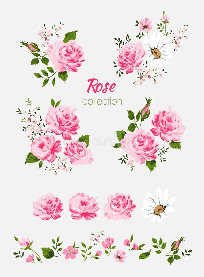 在白色背景的美丽的被隔绝的桃红色花 套不同的花卉设计元素 皇族释放例证