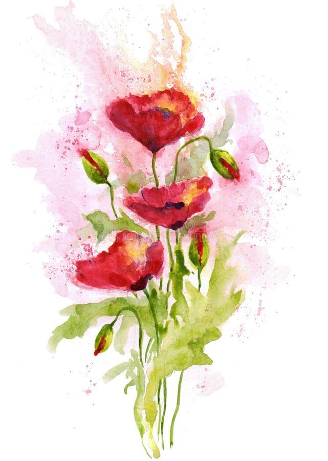在白色背景的花束红色鸦片花 额嘴装饰飞行例证图象其纸部分燕子水彩 向量例证