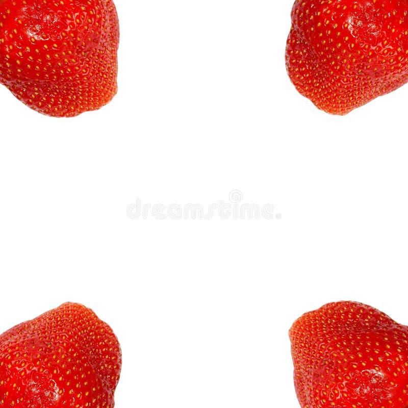 在白色背景的草莓在框架 免版税图库摄影