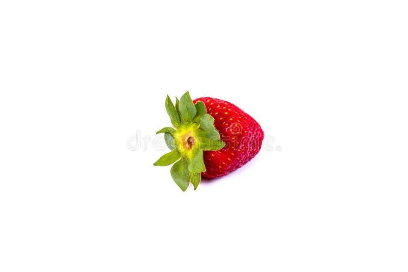 在白色背景的草莓 在被隔绝的白色背景的水多的红色草莓 免版税库存照片