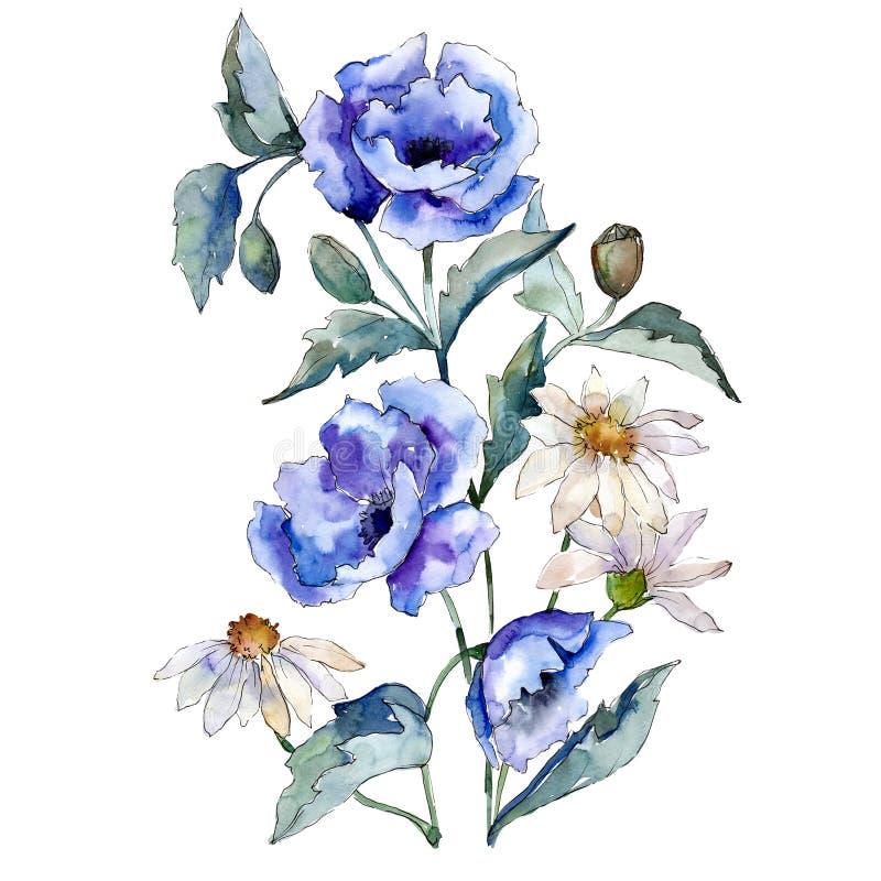 在白色背景的蓝色玫瑰和雏菊花花束 水彩例证集合 被隔绝的例证元素 皇族释放例证