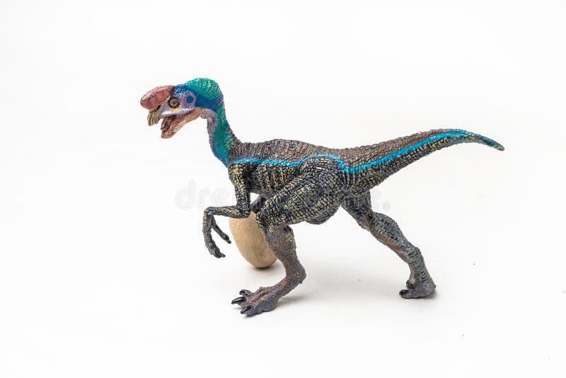 在白色背景的蓝色Oviraptor恐龙 库存图片