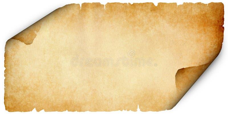 在白色背景的被撕毁的老羊皮纸 库存图片