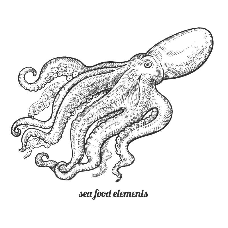 在白色背景的被隔绝的图象章鱼 库存例证