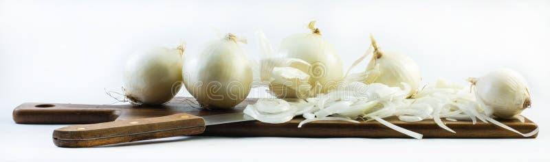 在白色背景的详细的被切的白洋葱-构成-侧视图 库存图片