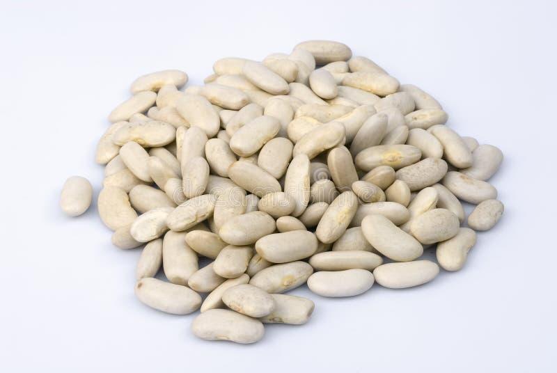 在白色背景的豆 免版税库存图片