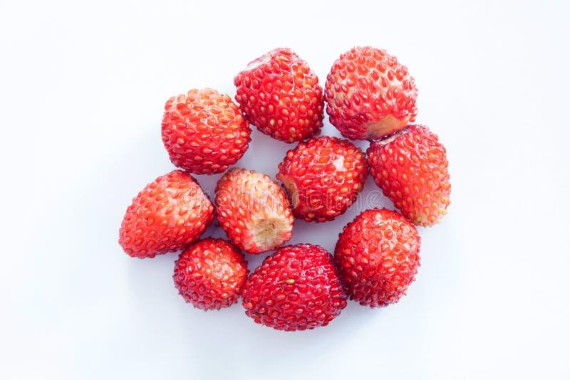 在白色背景的野草莓 红色成熟莓果草莓属 宏观顶视图 免版税图库摄影