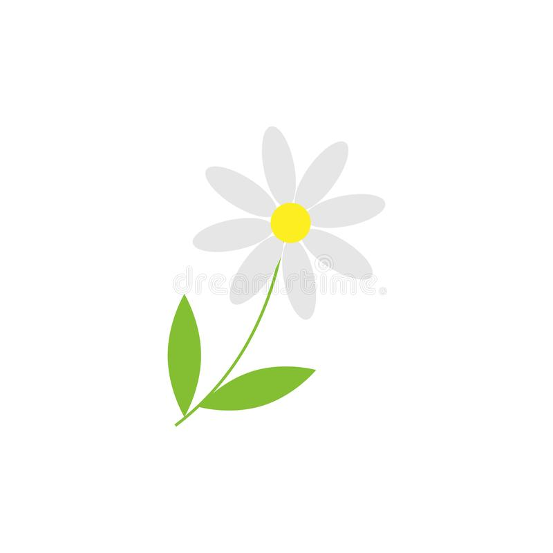 在白色背景的雏菊春黄菊花被隔绝的对象 r 皇族释放例证