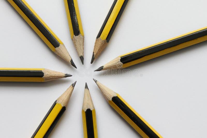 在白色背景的黑石墨铅笔 学生学校用品背景 象办公室汤用品的夹子 选择聚焦 写道 免版税库存图片
