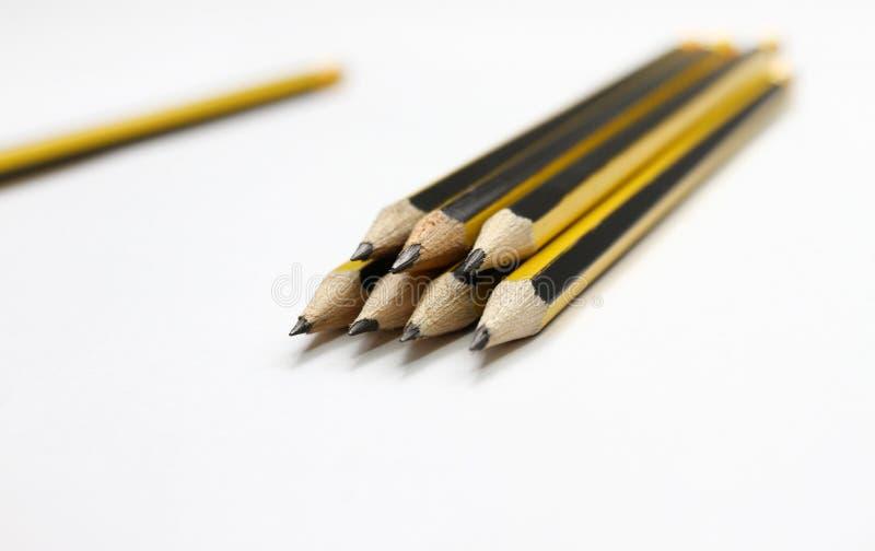 在白色背景的黑石墨铅笔 学生学校用品背景 象办公室汤用品的夹子 选择聚焦 写道 库存图片