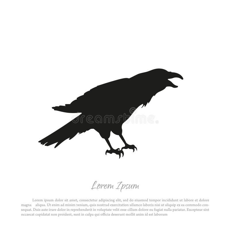 在白色背景的黑乌鸦剪影 被隔绝的掠夺 库存例证