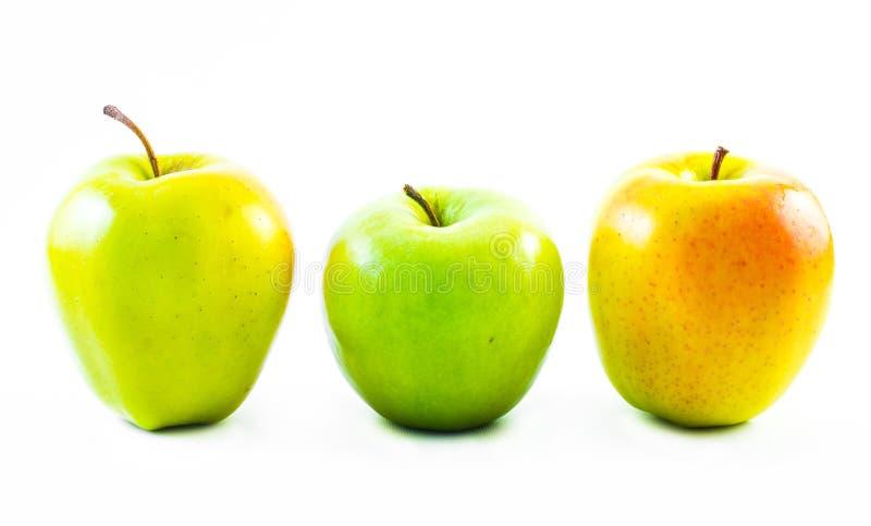 在白色背景的绿色和黄色色的苹果 库存图片