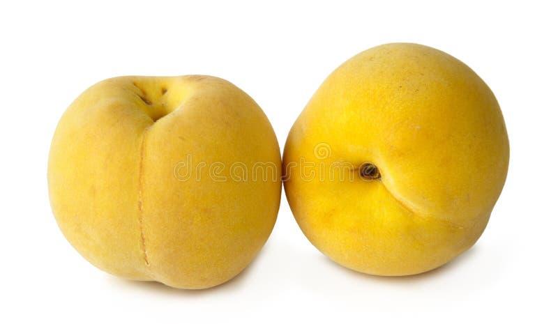 在白色背景的黄色桃子 免版税库存照片