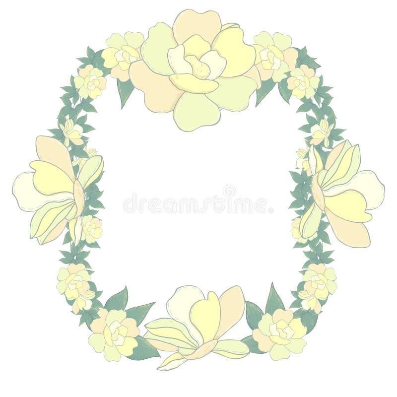 在白色背景的Flowrs框架黄色框架庭院花剪贴美术数字式illustartion 库存例证