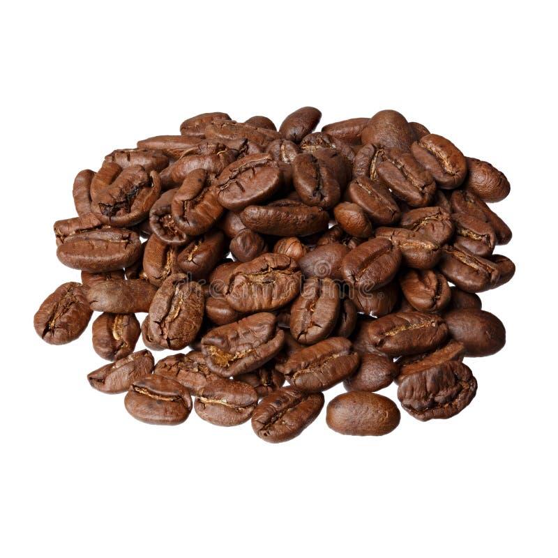 在白色背景的Maragogype哥伦比亚食家咖啡 免版税库存照片
