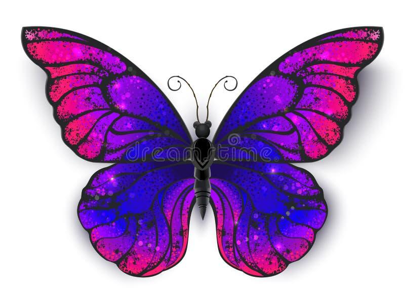 在白色背景的Tricolored蝴蝶 皇族释放例证