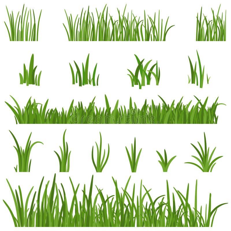 在白色背景绿草隔绝的套 草高度自然的设计元素 草坪传染媒介 向量例证