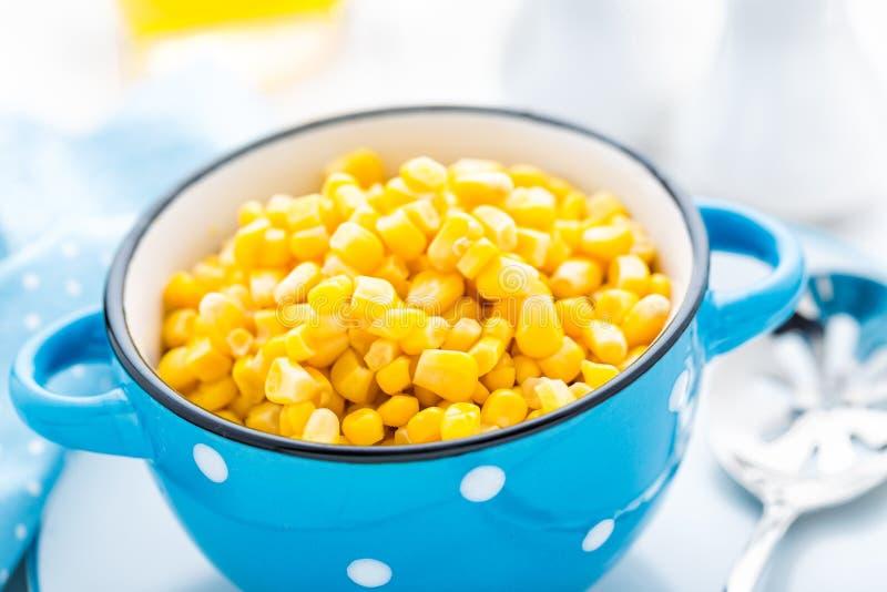 在白色背景装于罐中的玉米 库存照片