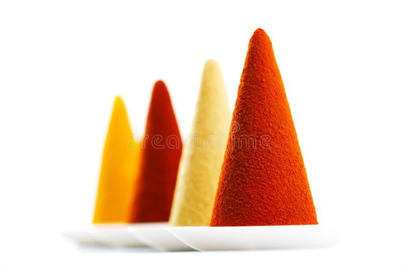 在白色背景辣椒、辣椒粉、姜黄和g的碎香料 免版税库存图片