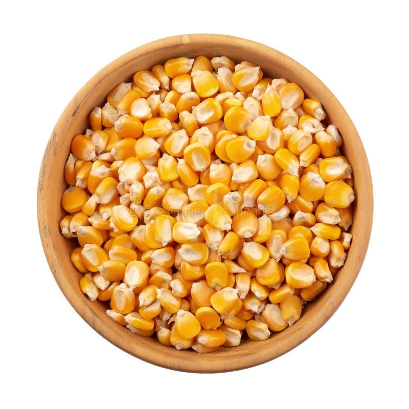 在白色背景隔绝的一个木碗的玉米种子 图库摄影
