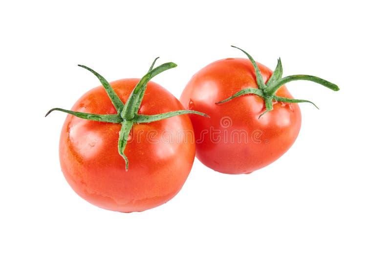 在白色背景隔绝的两个resh蕃茄 有机食品背景  图库摄影