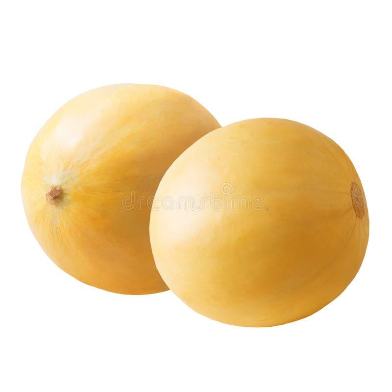 在白色背景隔绝的两整个瓜果子 库存图片