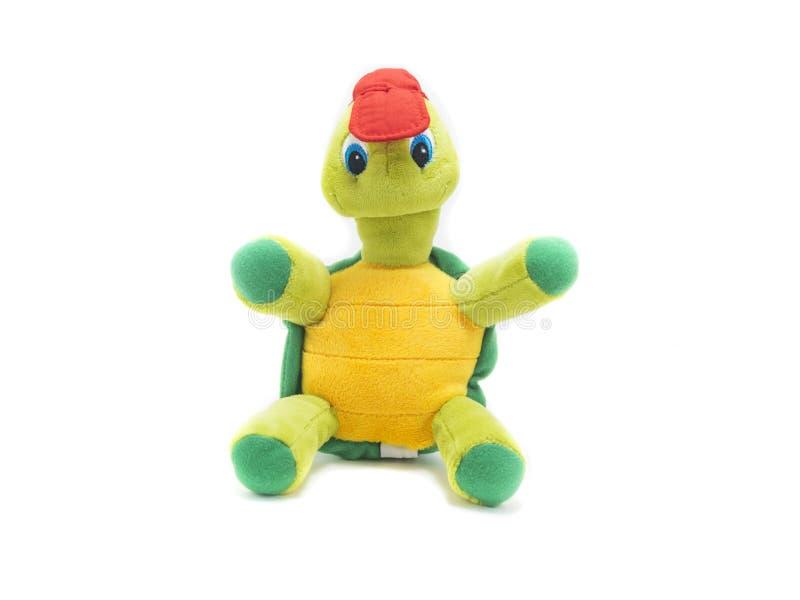 在白色背景隔绝的乌龟玩具 库存照片