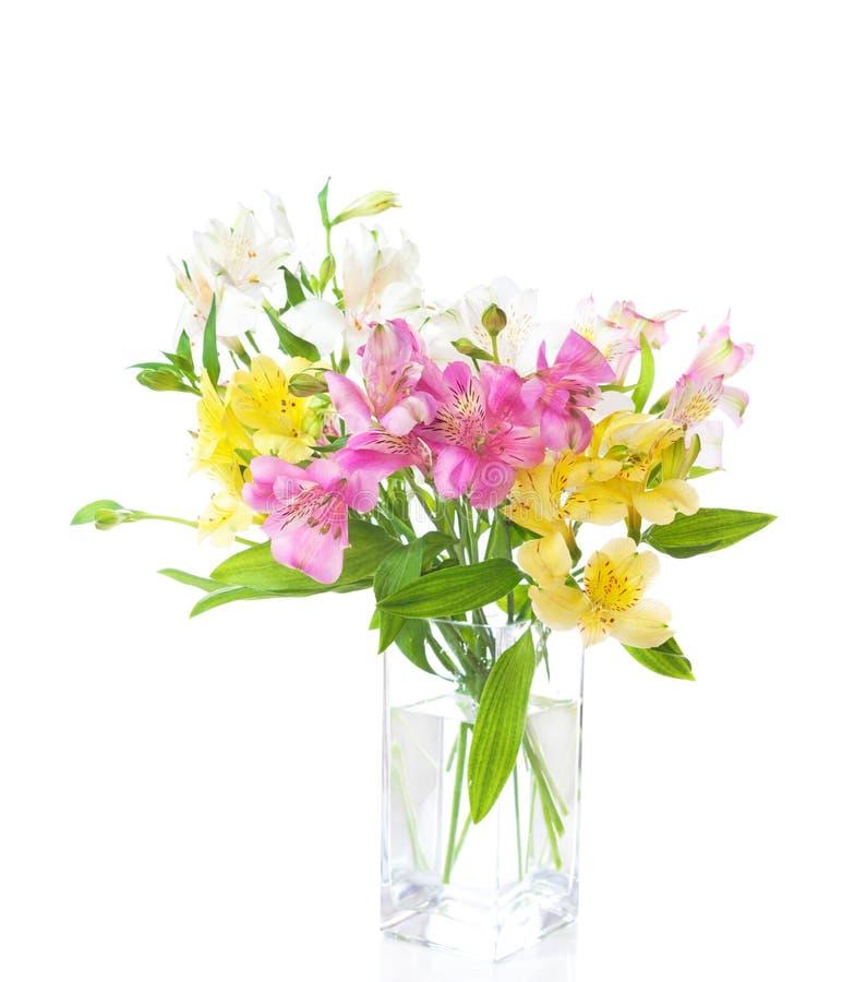 在白色背景隔绝的五颜六色的德国锥脚形酒杯花花束  库存照片