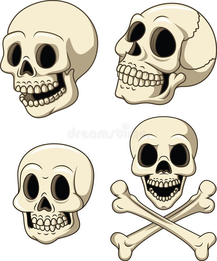 在白色背景隔绝的人的头骨汇集集合 库存例证