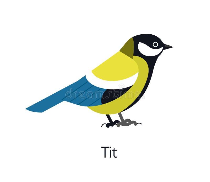 在白色背景隔绝的伟大的山雀 逗人喜爱的滑稽的小以昆虫为食的鸟 华美的狂放的鸟种类 敬慕 向量例证