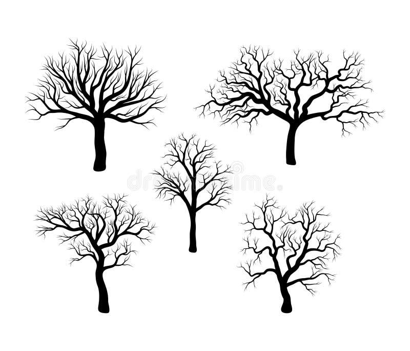 在白色背景隔绝的光秃的树冬天布景 库存例证