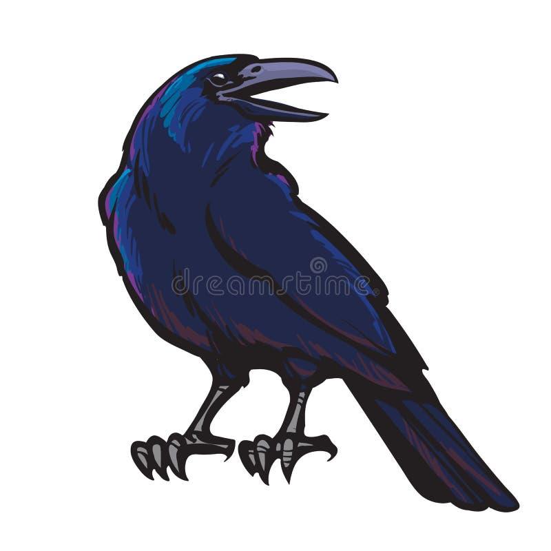 在白色背景隔绝的动画片黑乌鸦 掠夺万圣夜字符 手拉的剪影样式传染媒介 库存例证
