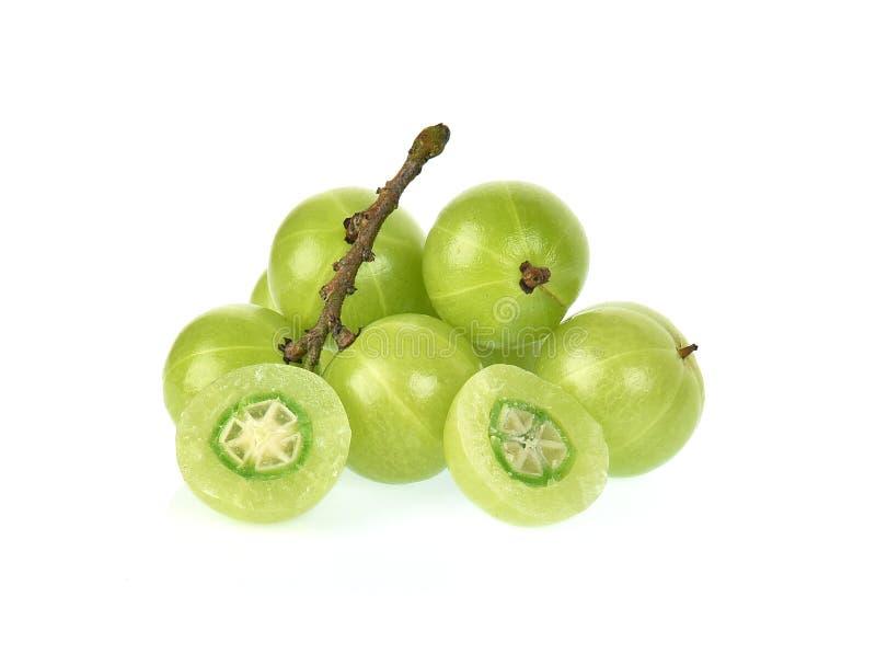 在白色背景隔绝的印地安鹅莓 免版税库存图片