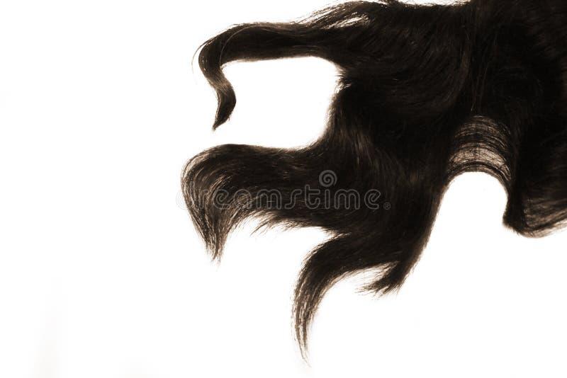 在白色背景隔绝的卷曲被洗染的头发子线 免版税库存照片