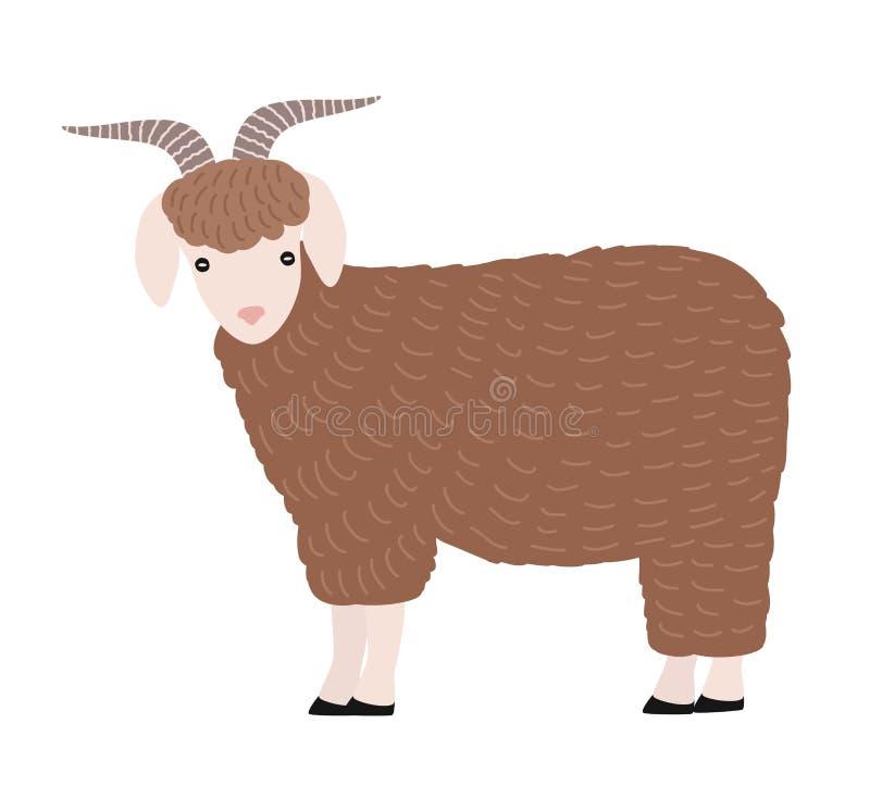 在白色背景隔绝的可爱的山羊 逗人喜爱的可爱的与垫铁的动画片家养的仓库广场动物,国家农场 库存例证