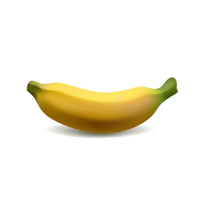 在白色背景隔绝的唯一黄色香蕉,现实传染媒介例证 皇族释放例证