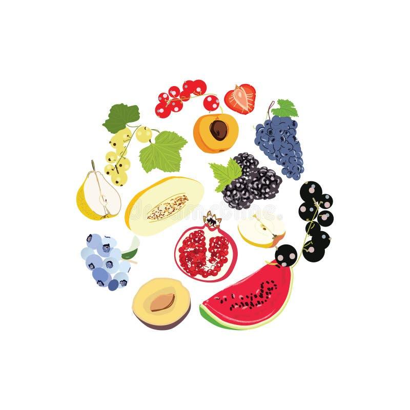 在白色背景隔绝的大果子集合乱画例证 传染媒介设计的食物象 向量例证