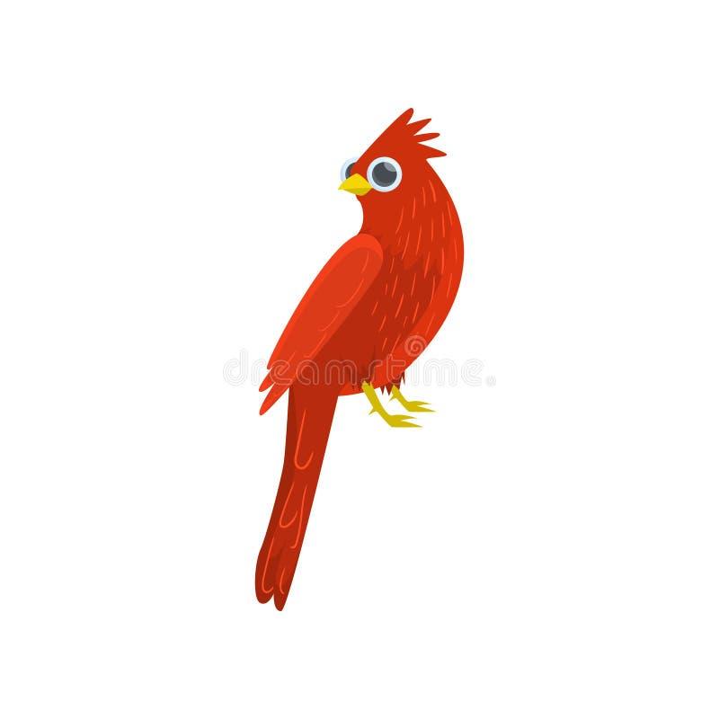 在白色背景隔绝的大红色坐的主要鸟 侧视图 库存例证