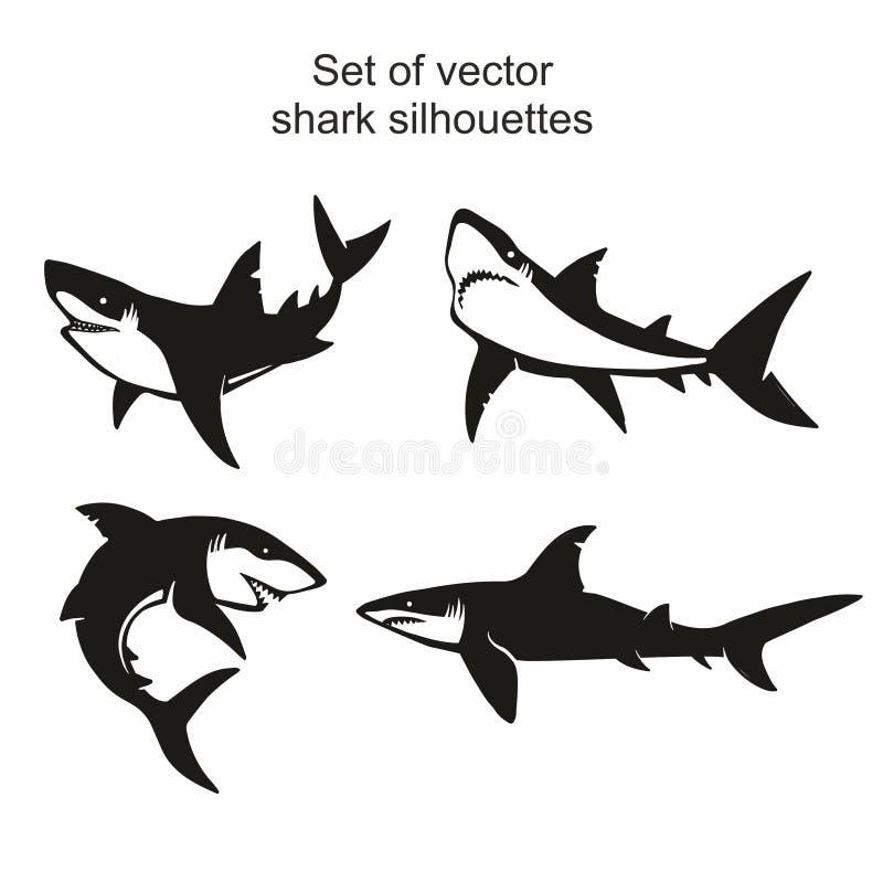 在白色背景隔绝的套四个传染媒介鲨鱼剪影,标志,象,设计元素 皇族释放例证