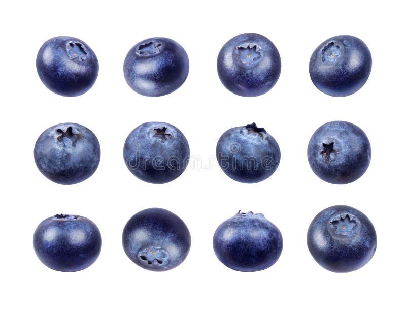 在白色背景隔绝的套新鲜的蓝莓 库存照片