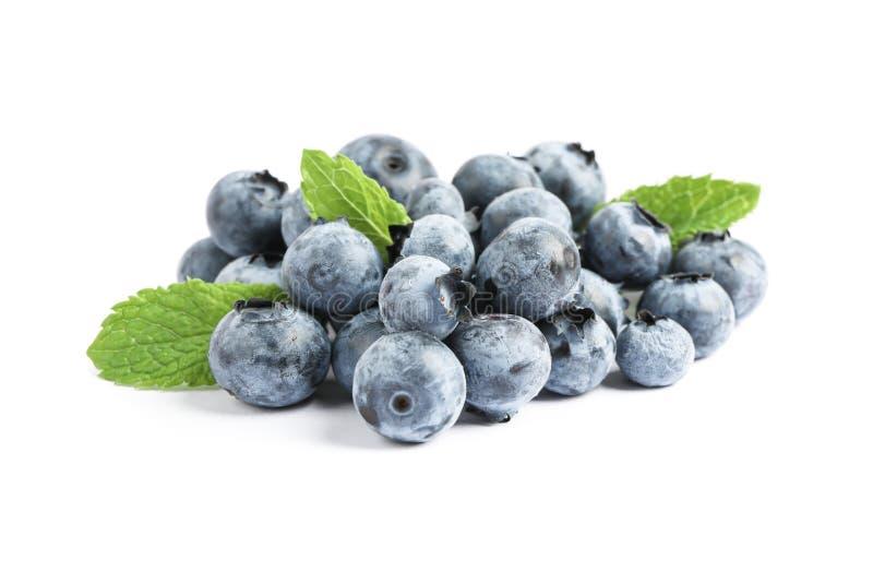 在白色背景隔绝的小组蓝莓 免版税库存照片